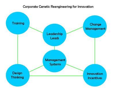 Reengineering_for_innovation_2